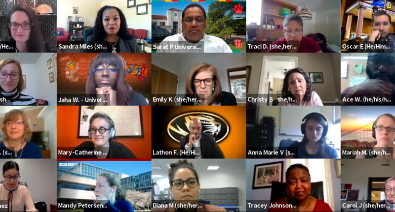 Diverse professionals on a Zoom call